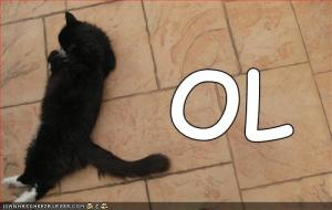 funny-pictures-black-l-cat-lol